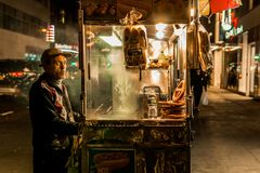 Food vendor in new york. Making money in new york is hard, so do what ever you can royalty free stock images