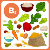 Food vitamin B5 sources. Set of organic food with vitamin B5. Ingredients for health: vegetable - broccoli, beet and carrot, meal, egg and cheese, nuts, creame Stock Images