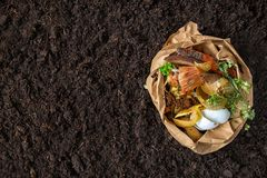 Free Food Waste.compost From Food Waste. Environmental Control Royalty Free Stock Photo - 136360585