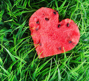Watermelon heart on green grass Royalty Free Stock Image