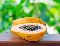 Yellow papaya in the garden Stock Image