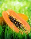 Yellow papaya on green grass Royalty Free Stock Photo
