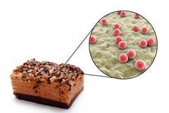 Foodborne infekcje, medyczny pojęcie fotografia royalty free