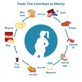 Foods that contribute to obesity. Stock Photos