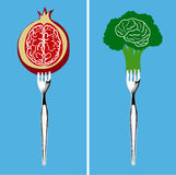Foods for healthy brain Stock Images