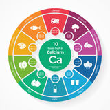 10 foods high in Calcium. Nutrition infographics Royalty Free Stock Images