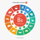 Foods high in vitamin B5 Royalty Free Stock Image