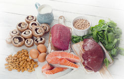 Foods Highest in Natural Vitamin B2. Stock Image