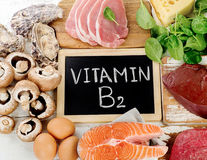 Foods Highest in Vitamin B2. healthy eating Royalty Free Stock Photo