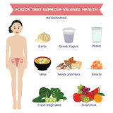 Foods that improve vaginal health info graphic food,  ico Stock Photography