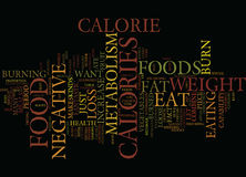 Foods That Increase Your Fat Metabolism Word Cloud Concept Stock Image