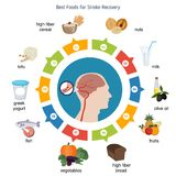 Best foods for stroke recovery Royalty Free Stock Image