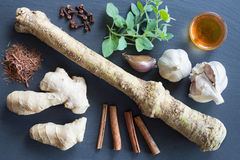 Foods with natural antibacterial properties on a dark background. Horseradish, ginger, clove, cinnamon, garlic, honey, lapacho, oregano Stock Image