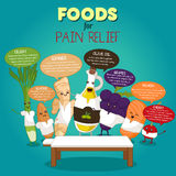 Foods for Pain Relief Infographic Stock Images