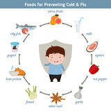 Foods for preventing cold and flu. Infographic element. Health concept Royalty Free Stock Photography