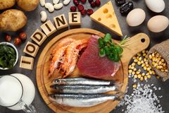 Foods rich in iodine. On grey background royalty free stock photo
