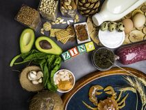Foods Wysocy w cynk gdy ryba, garnele, wo?owina, ser, szpinak, kakao, dyniowi ziarna, krab, czarny kawior, czosnek, koks zdjęcie royalty free