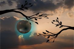 Fool moon. Surreal full moon and trees silhouette vector illustration