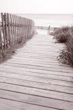Foopath on Valencians Beach; Formentera; Balearic Island Stock Images