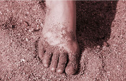 Foot. A picture of a foot in the sand stock photos