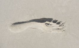 Foot 1. Footprint in the sand of a beach Royalty Free Stock Photos