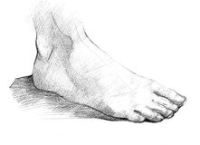 Foot. Black and white drawing of the human body a foot royalty free illustration