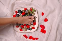 Foot. Pedicured foot and rose petals on silk cloth Stock Photos
