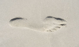 Foot 2. Footprint in the sand of a beach Royalty Free Stock Photo
