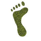 Foot Royalty Free Stock Photography