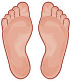 Foot stock illustration