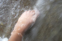 Foot. Woman foot in the water of a mountain river, Alps mountains, Italy royalty free stock photo