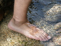 Foot. In the water Stock Images