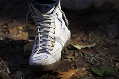 Foot. Hiking in a national park Stock Photo
