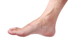 Foot Stock Photography