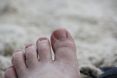 Foot. Left foot that has been in the sand stock photos