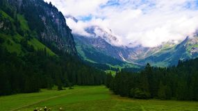 Foot of the alpine mountains part two Royalty Free Stock Photography