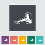 Foot anatomy flat icon. Vector illustration royalty free illustration
