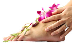 Foot And Orchid Royalty Free Stock Photography