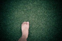 foot on artificial grass Stock Images