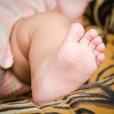 Foot of baby. Royalty Free Stock Images