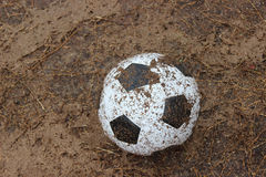 Foot ball. Dirt Cup on the pitch in the rain Stock Photo