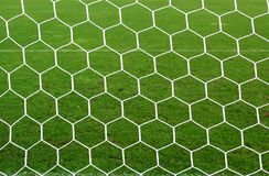 Foot ball net and green grass. White foot ball net and green grass Royalty Free Stock Images