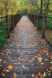 Foot Bridge Royalty Free Stock Photography