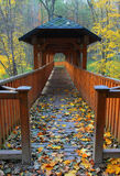 Foot-bridge. Wooden foot-bridge covered with coloured leaves Royalty Free Stock Image