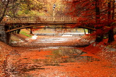 Foot bridge. View of the beautiful foot bridge in a park during the autumn time Royalty Free Stock Photos