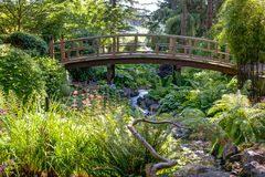 Foot bridge through Japanese garden near Victoria, BC Stock Image