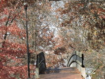 Foot Bridge lamppost and fall colors Stock Photography