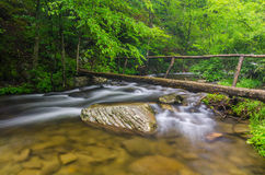 Foot bridge, Middle Prong, Great Smoky Mountains. A log foot bridge crosses the Middle Prong of the Little River in the Great Smoky Mountain National Park in Stock Images