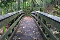 Foot Bridge in Nature. Small foot bridge in natural setting for hikers to connect to trail Stock Photos