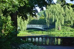 Foot Bridge Over a Pond. In sunshine Stock Images